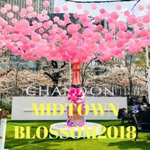 【東京お花見】MIDTOWN BLOSSOM2018🌸東京ミッドタウンで満開の桜!とらや春限定「桜あんみつ」